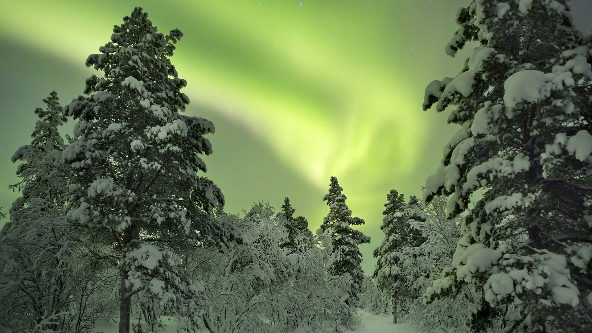 Northern Lights Break In Lapland 4 Days 3 Nights